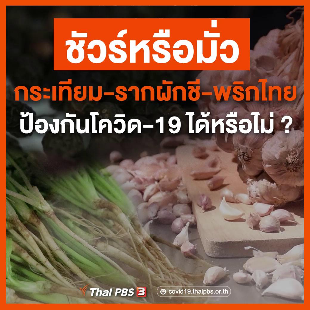 ชัวร์หรือมั่ว กระเทียม – รากผักชี – พริกไทย ป้องกันโควิด-19 ได้หรือไม่ ?